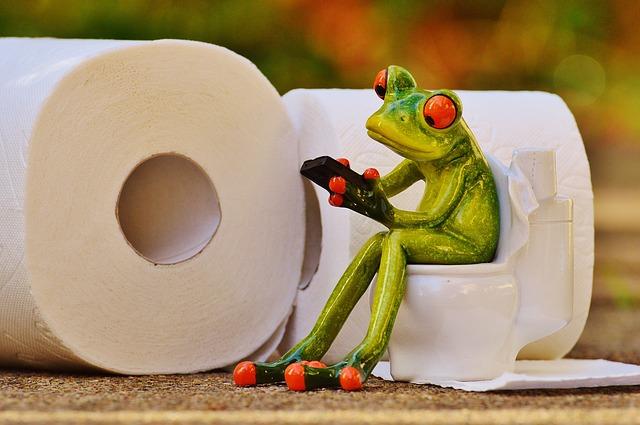 frog 1037248 640 1 - 子供がハミガキ好きになる方法!電動歯ブラシの効果的な使い方
