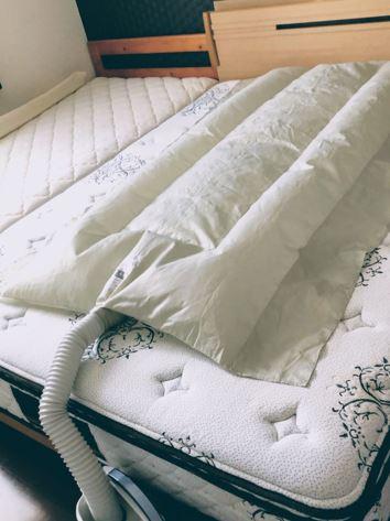 dani3 1 - 【子供用ベッド&マットレスのダニ対策】我が家で効果があった便利グッズは?