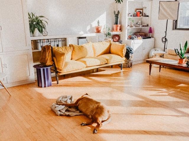 mo freeman GVCuk3FmeUA unsplash - 【賃貸で使える床材の選び方】おすすめDIY7選!タイルカーペット・フロアシート・畳