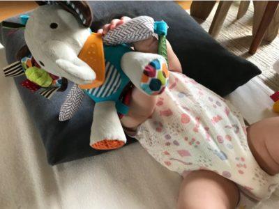 2020 06 23 17h15 09 400x300 - 【SKIP HOP(スキップホップ)おもちゃ・口コミレビュー】0歳・赤ちゃんのお気に入りぬいぐるみ!
